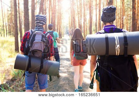 Young tourists walking through the wood path with duffel bags and sleeping mats.