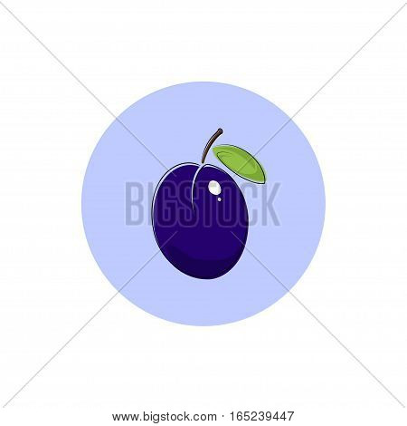 Plum Icon, Colorful Plum Fruit Icon, Illustration
