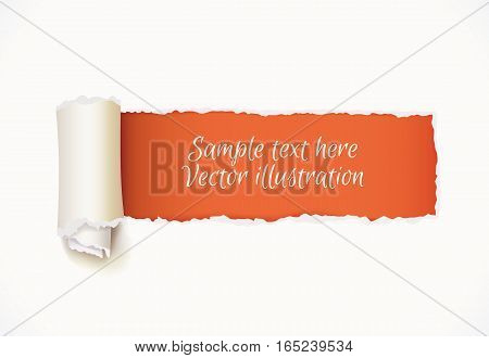 Torn Paper with space for text. Vector illustration. Isolated on white background