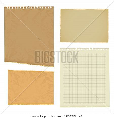 Blank worksheet exercise book. Old thick paper with ragged edge. Vector illustration. Isolated on white background. Set