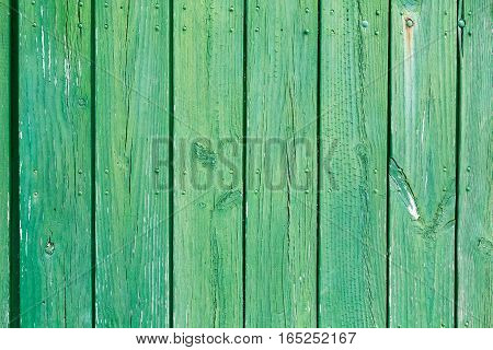 Wooden green background in daylight border, surface