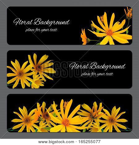 Background Texture Made Of Sunflower And Place For Text