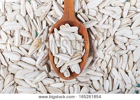 a lot of white sunflower seeds scattered seeds are a wooden spoon
