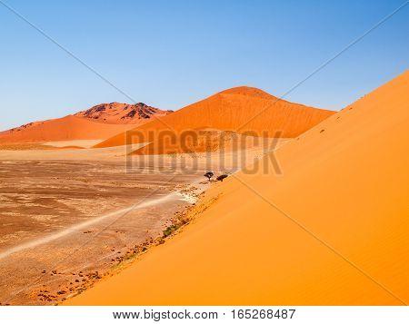 Red dunes of Namib Desert near Sossusvlei, aka Sossus Vlei, Namib-Naukluft National Park, Namibia, Africa.