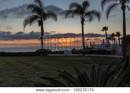 Sunset with palms at Coronado Island.  Taken whilst on holiday in California in January of this beautiful palm tree sunset.