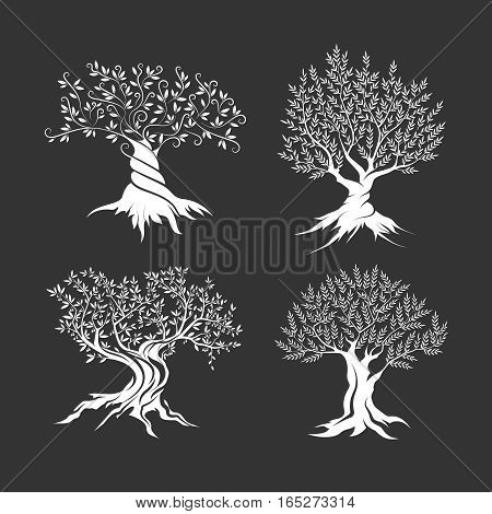 Olive trees silhouette icon set isolated on dark background. Web infographic modern vector sign.Premium quality illustration logo design concept pictogram.