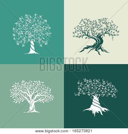 Olive trees silhouette icon set isolated on green background. Web infographic modern vector sign.Premium quality illustration logo design concept pictogram.