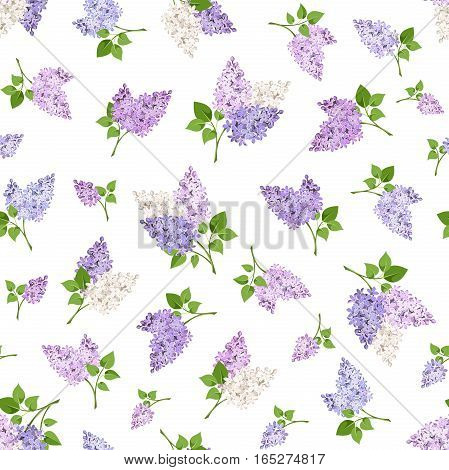 Vector seamless pattern with branches of lilac flowers on a white background.