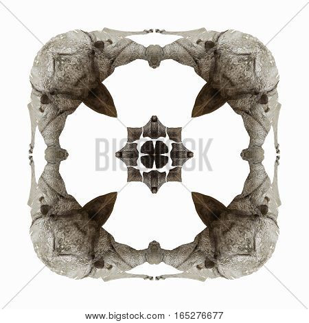 square shape abstract photo with rhinoceros theme