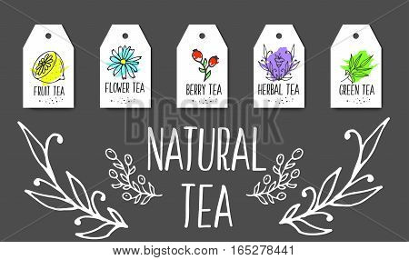 Herbal tea tags collection. Organic herbs and wild flowers. Hand sketched fruits and berries illustration. Flower and leaves branches. Floral vector design.