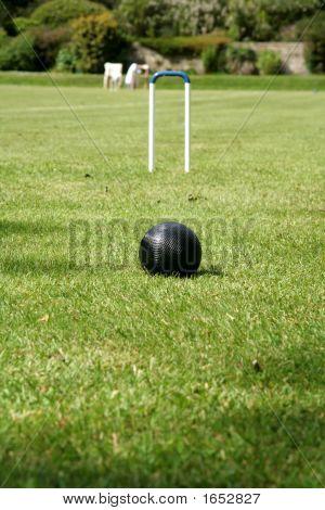 Croquet Black Ball