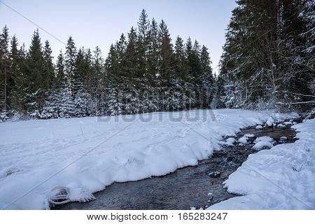 Landscape od winter forest with small brook
