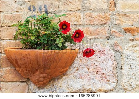 Hanging Pot With Flowers On A Stone Wall