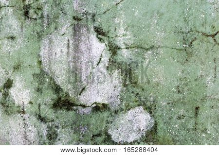 Background Texture From Old Plaster