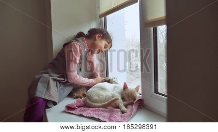 girl teen and pets cat and pet dog looking out window, the cat sleeps