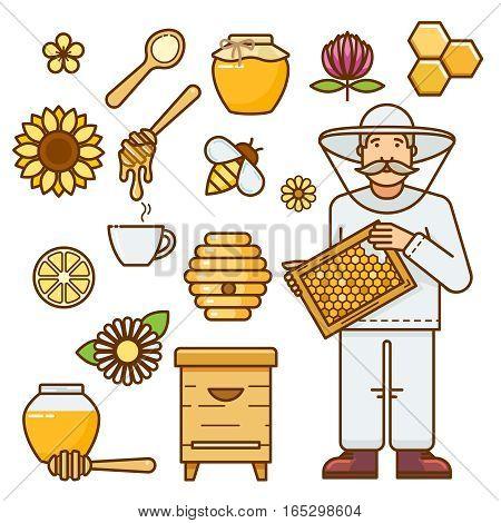 Honey jar, bee, flower, honeycomb. Honey vector drawing for food menu or honey