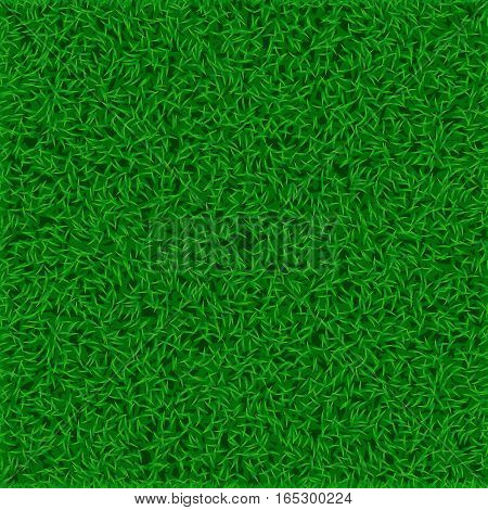 illustration of green grass lawn background. square shape