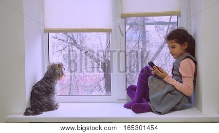 girl teen playing web online the game for smartphone and dog sitting on window sill windowsill pet