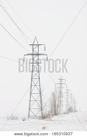 Line of transmission towers marching toward the horizon in a white winter scene, vertical crop