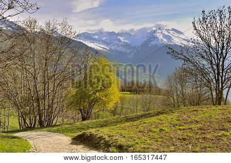 footpath crossing meadow with mountain pics background