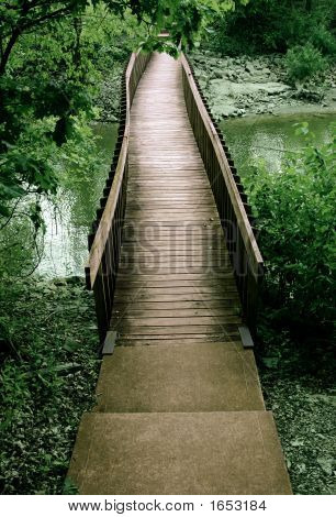 Bridge Out Of The Woods
