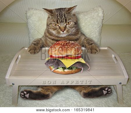 The hungry cat is in a bed. He is going to eat a mouse burger.