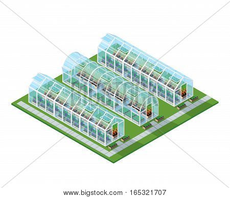 Greenhouses isometric location with eco natural healthy seeding vegetables and plants isolated vector illustration