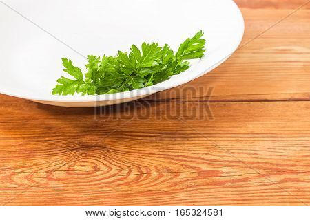 Background of fragment of a white dish with bunch of fresh green parsley closeup on an old wooden surface