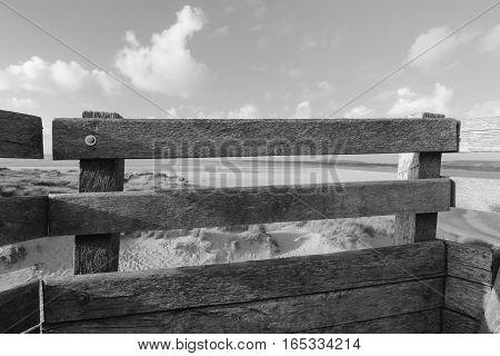 dunes of the Touquet , the  mirador  ,PAS-DE-Calais, hauts de France , France