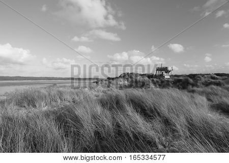 DUNES OF THE TOUQUET,  THE MIRADOR ,PAS-DE-CALAIS, HAUTS-DE-FRANCE ,FRANCE