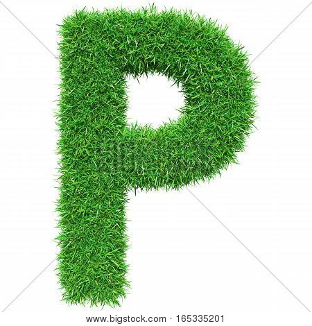 Green Grass Letter P. Isolated On White Background. Font For Your Design. 3D Illustration