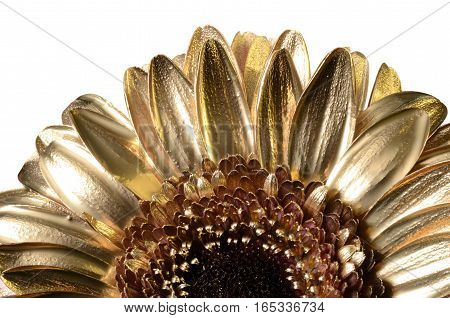 Daisy Flower Covered With Golden Paint