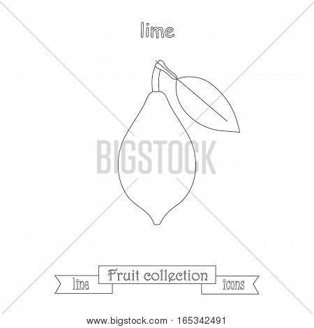 Line lime icon, fruit icon collection stock vector illustration