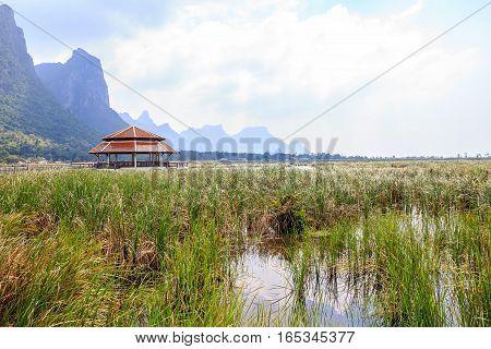 Old pavilion in lake of Khao Samroiyod National Park, Prachuap Khiri Khan, Thailand.