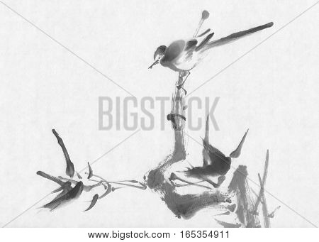 Bird on a branch sumi-e ink painting. Asian Traditional Painting.