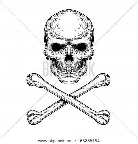 illustration of a skull and crossbones, engraving