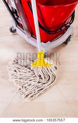 Cleaning With Mop