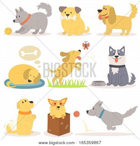 Vector set of funny cartoon dogs illustration in flat style. Funny happy puppy isolated friendly mammal. Domestic element group flat icon comic canine.