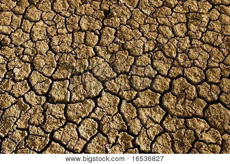 Photo of cracked and dried soil under the Sun