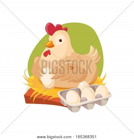 Chicken Nesting Laying Fresh Eggs, Farm And Farming Related Illustration In Bright Cartoon