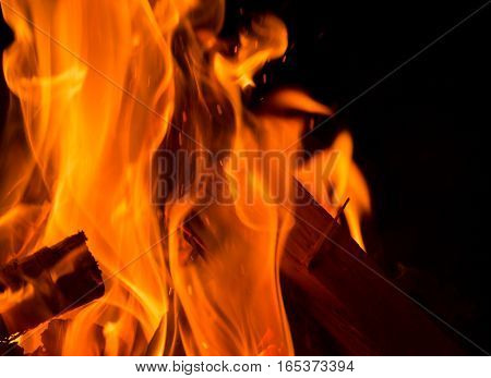 flames emanate from logs at a camp fire