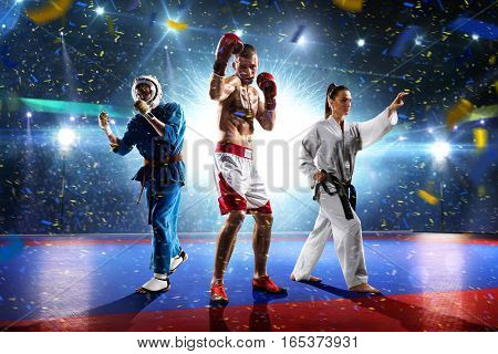 Multi sports boxing karate taekwondo collage on the grand court