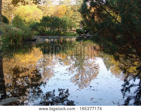 A lake,  trees and water reflections. Autumn day