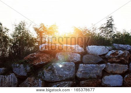 The sun shines down on a stone wall.