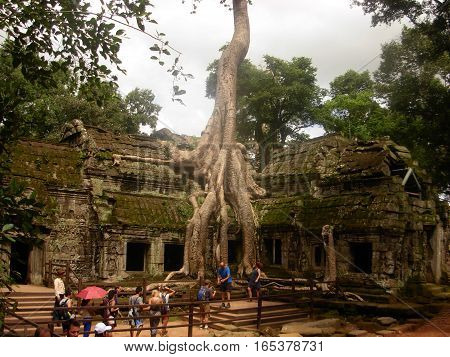 SIEM REAP, CAMBODIA - AUGUST 06, 2014 - Ta Phrom ancient temple with big roots and tree that grew on it The temple is also known for Tomb Raider movie