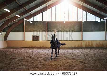 Female Riding Dark Horse In Indoor Paddock