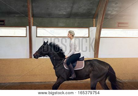 Profile Of A Woman On A Horse