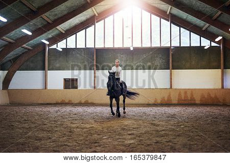 Pretty Woman Riding A Brown Horse