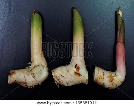 Galangal in a rectangular plate with dark background