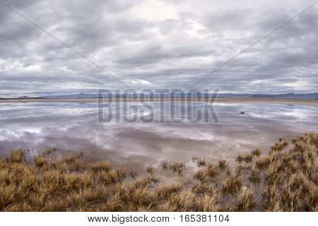Storm clouds cast reflections over calm surface of pool created from winter rains at Zzyzx in California Mojave Desert
